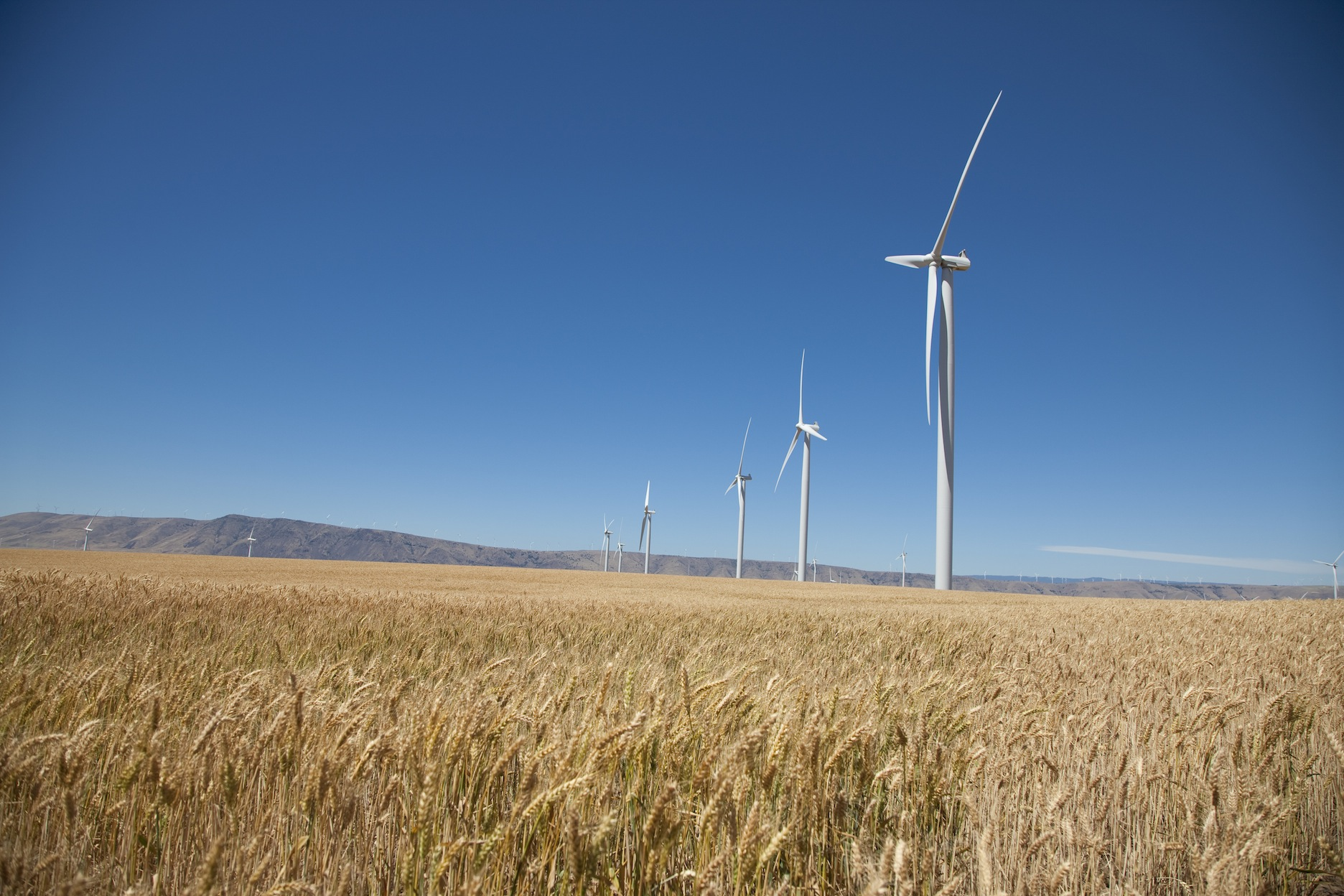 Sustainability at ICC Part 1 of 3: Wind Turbine Still Up In the Air