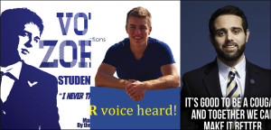 The three campaign posters from the candidates.